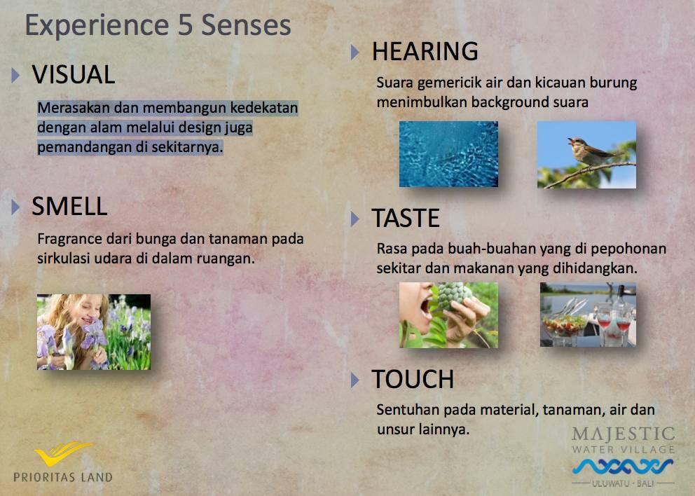 5 senses experience