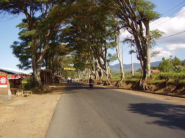 Papanggungan, Cikajang Garut (Sumber : Teguh Ginanjar, Panoramio)