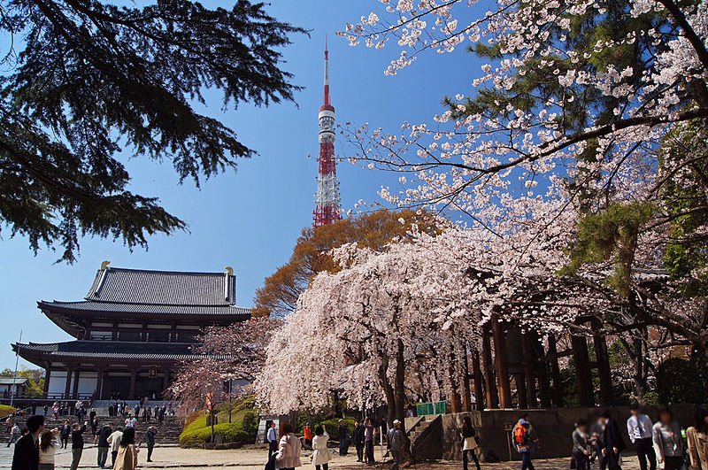 TokyoTower-Sakura