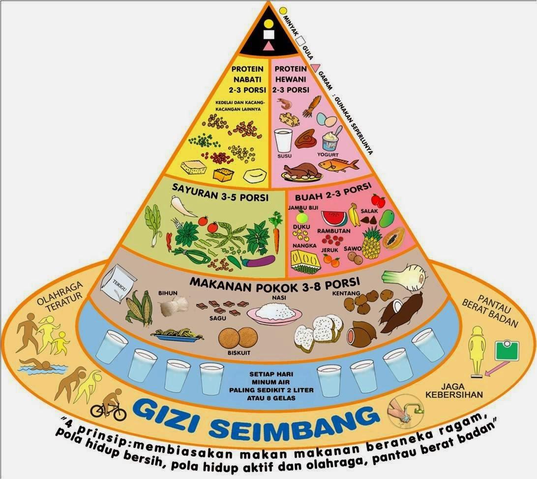 Piramida makanan & pedoman gizi seimbang